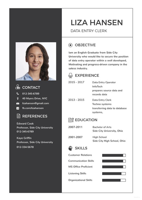 resume template word  Data Entry Resume Template - 13+ Free Word, Excel, PDF ..