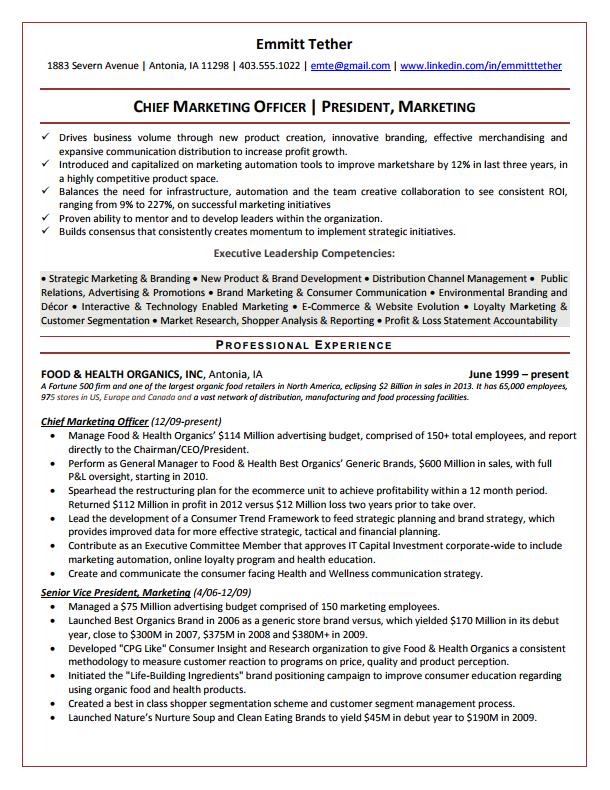 vp resume template  Executive Resume Samples - vp resume template