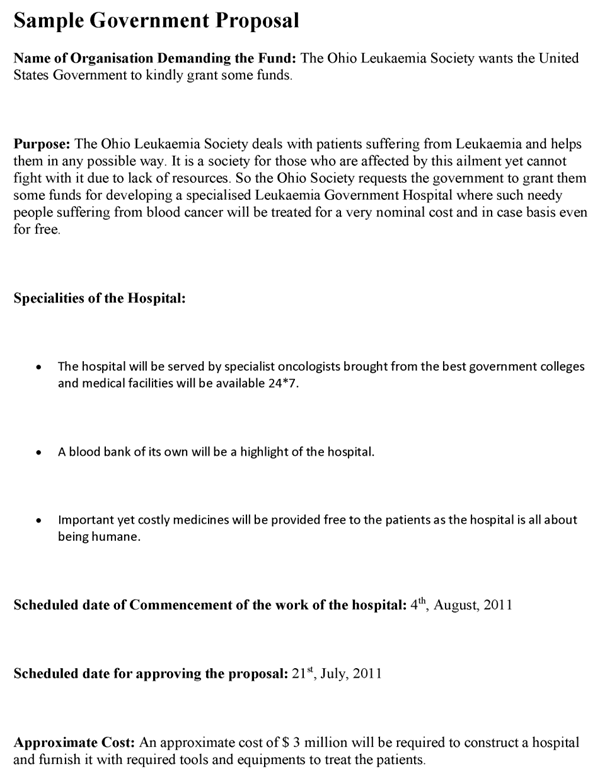 government proposal template  Government Proposal Template - government proposal template