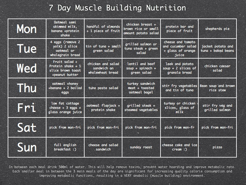 7 day meal plan for muscle gain female  3D-Muscle