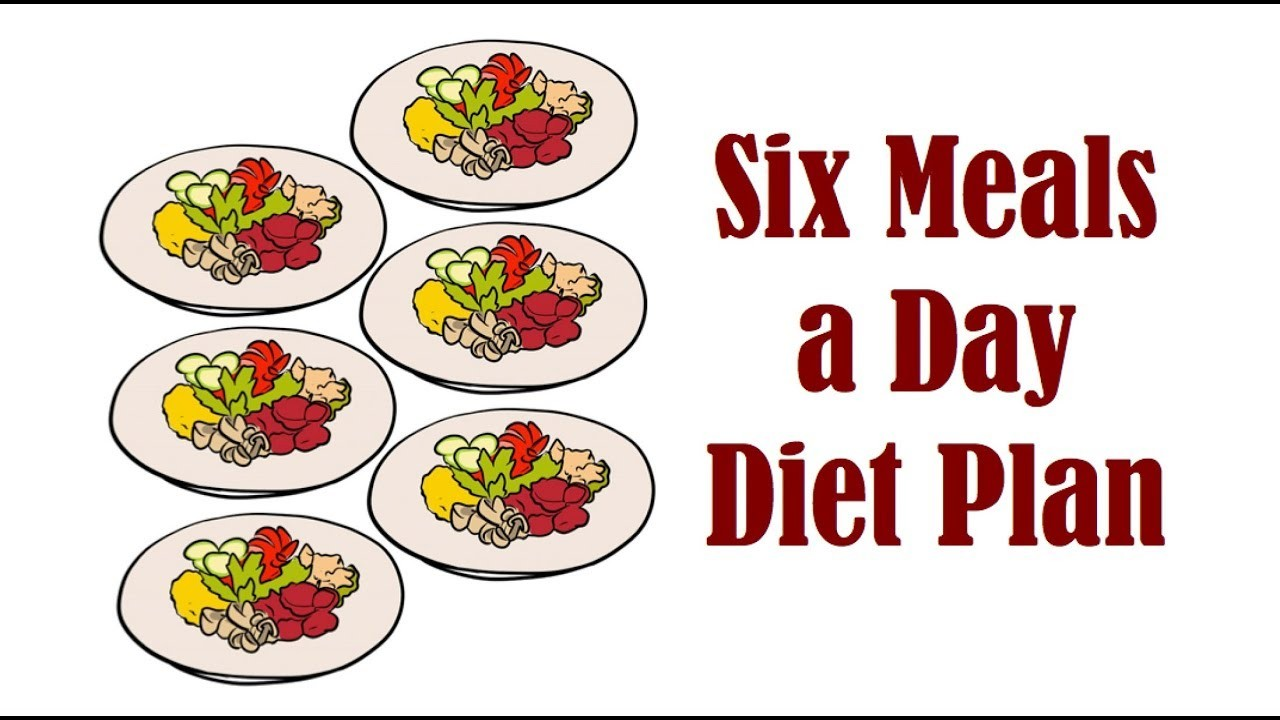 meal plan 6 small meals a day  Should you Follow a Six Meals a Day Diet Plan - YouTube - meal plan 6 small meals a day