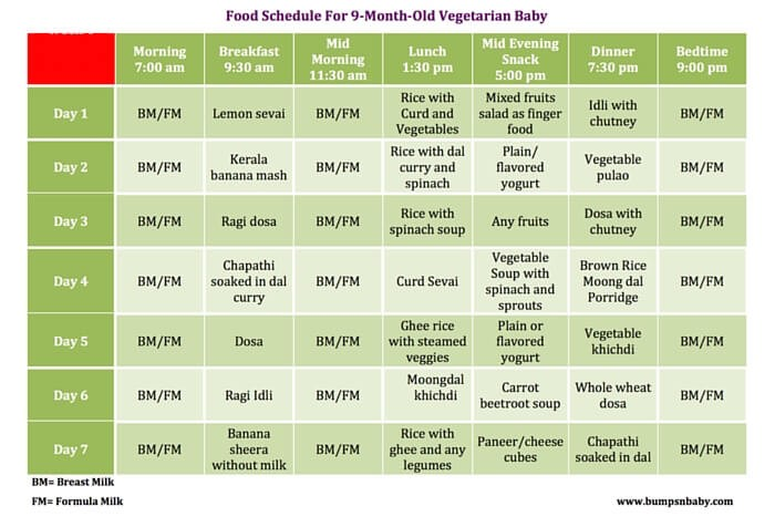 diet plan for 9 month old baby  9 Month Old Feeding Schedule with FREE Printable Food Charts - diet plan for 9 month old baby